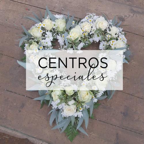 Centros Especiales